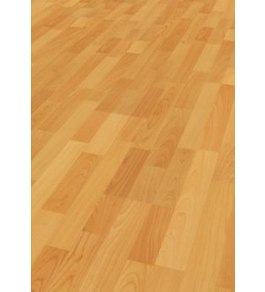 Laminate BASIC D1424 6mm AC3/23