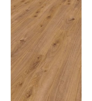 Laminate AMAZONE D4169 10mm AC5/33 V4